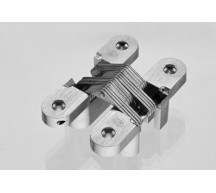 Stainless Steel Invisible Hinge